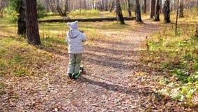 Το παιδί στη διασκέδαση πάρκων φθινοπώρου που παίζει και που γελά, που οδηγά ένα μηχανικό δίκυκλο Μια όμορφη φυσική θέση φιλμ μικρού μήκους