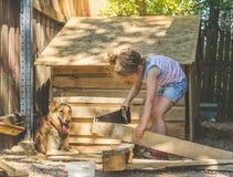 Το παιδί χτίζει το θάλαμο για τα σκυλιά στοκ φωτογραφία