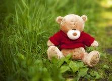 Το παιχνίδι Teddy αντέχει στη χλόη Στοκ φωτογραφίες με δικαίωμα ελεύθερης χρήσης