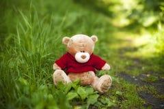 Το παιχνίδι teddy αντέχει Στοκ Φωτογραφία