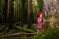 Το παιδί έκρυψε πίσω από ένα δέντρο Στοκ φωτογραφία με δικαίωμα ελεύθερης χρήσης