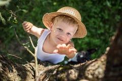 Το παιδί με το καπέλο αχύρου αναρριχείται σε ένα δέντρο Στοκ εικόνες με δικαίωμα ελεύθερης χρήσης