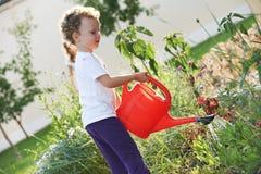 Το παιδί με το πότισμα μπορεί στην κηπουρική Στοκ εικόνα με δικαίωμα ελεύθερης χρήσης