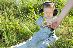 Το παιδί παίρνει από τα χέρια dads τον κλάδο tansy Στοκ φωτογραφία με δικαίωμα ελεύθερης χρήσης