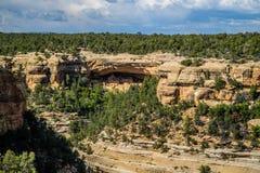 Το παλάτι απότομων βράχων στο εθνικό πάρκο Mesa Verde, Κολοράντο στοκ εικόνα με δικαίωμα ελεύθερης χρήσης