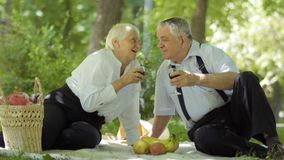 Το παλαιό καλό ζεύγος έχει ένα πικ-νίκ στο πάρκο και το κόκκινο κρασί κατανάλωσης φιλμ μικρού μήκους