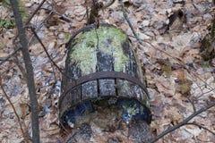 Το παλαιό ξύλινο βαρέλι με τα πλαίσια σιδήρου, που σπάζουν και σάπια, βρίσκεται στο δάσος φθινοπώρου στα ξηρά φύλλα Στοκ εικόνες με δικαίωμα ελεύθερης χρήσης