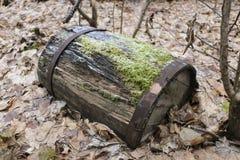 Το παλαιό ξύλινο βαρέλι με τα πλαίσια σιδήρου, που σπάζουν και σάπια, βρίσκεται στο δάσος φθινοπώρου στα ξηρά φύλλα Στοκ Φωτογραφίες