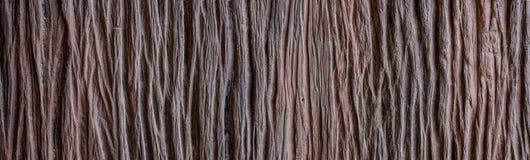 Το παλαιό ξύλο έχει το λωρίδα ή το σγουρό σιτάρι λωρίδων στοκ φωτογραφία με δικαίωμα ελεύθερης χρήσης