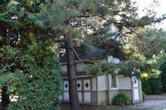Το παλαιό σπίτι στο πάρκο Στοκ Εικόνες
