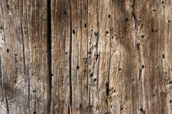 Το παλαιό χαρτόνι Στοκ φωτογραφία με δικαίωμα ελεύθερης χρήσης