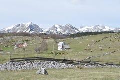 Το πανόραμα βουνών Durmitor την άνοιξη στοκ φωτογραφία με δικαίωμα ελεύθερης χρήσης