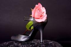 Το παπούτσι της γυναίκας και αυξήθηκε Στοκ Εικόνα
