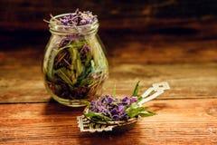 Το παραδοσιακό ρωσικό πράσινο βοτανικό τσάι από Fireweed φεύγει: Τσάι Koporye, ρωσικό τσάι ή Ivan Chai Στοκ Εικόνες