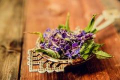 Το παραδοσιακό ρωσικό πράσινο βοτανικό τσάι από Fireweed φεύγει: Τσάι Koporye, ρωσικό τσάι ή Ivan Chai Στοκ Φωτογραφίες