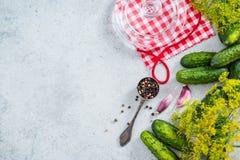 Το παστωμένο επίπεδο αγγουριών αγγουριών βάζει το υπόβαθρο συνταγής Στοκ φωτογραφίες με δικαίωμα ελεύθερης χρήσης