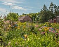 Το παλαιό αγρόκτημα δεν φάνηκε ποτέ τόσο καλό Στοκ Εικόνες