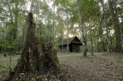Το παλαιό εξοχικό σπίτι στο δάσος μυστηρίου Στοκ Φωτογραφίες