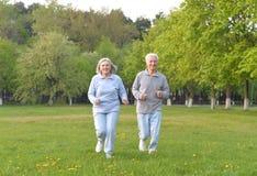 Το παλαιό ζεύγος κάνει τον αθλητισμό στη φύση στοκ εικόνα με δικαίωμα ελεύθερης χρήσης