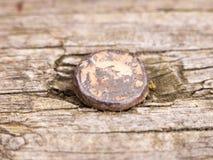 Το παλαιό και στενό επάνω μακρο εσωτερικό σκουριάς screwhead αποσυντέθηκε ξύλο Στοκ Φωτογραφίες