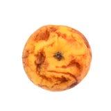 Το παλαιό ξηρό ραβδωτό μήλο, κίτρινο μήλο, σάπισε, φυσική σύσταση Στοκ Εικόνες