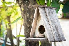 Το παλαιό σπίτι πουλιών κρεμά στο δέντρο (εκλεκτική εστίαση) Στοκ Εικόνες