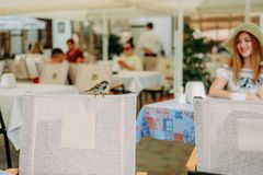 Το πεζούλι καρεκλών καφέδων σπουργιτιών πουλιών φαίνεται κορίτσι Στοκ φωτογραφία με δικαίωμα ελεύθερης χρήσης
