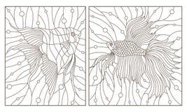 Το περίγραμμα έθεσε με τις απεικονίσεις στο λεκιασμένο κόκκορα ψαριών ψαριών ενυδρείων ύφους γυαλιού και scalars, σκοτεινά περιγρ διανυσματική απεικόνιση