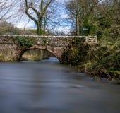 Το περιστέρι ποταμών σε Milldale, Derbyshire στοκ εικόνες
