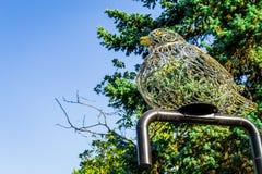 Το περιστέρι σιδήρου Στοκ εικόνα με δικαίωμα ελεύθερης χρήσης