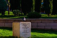 Το περιστέρι στο πάρκο Στοκ φωτογραφία με δικαίωμα ελεύθερης χρήσης
