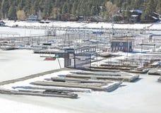 Το πιάσιμο του χειμώνα Στοκ Εικόνες