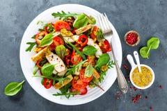 Το πιάτο σαλάτας φρέσκων λαχανικών των ντοματών, του σπανακιού, του πιπεριού, του arugula, chard των φύλλων και του ψημένου στη σ Στοκ Φωτογραφία