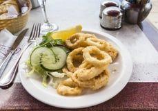 Το πιάτο του τηγανισμένου calamari (δαχτυλίδια καλαμαριών) με τη σαλάτα διακοσμεί Στοκ φωτογραφίες με δικαίωμα ελεύθερης χρήσης