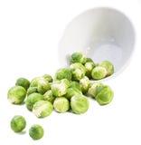 το πιάτο των Βρυξελλών αν&alpha Στοκ εικόνα με δικαίωμα ελεύθερης χρήσης