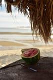 Το πικ-νίκ καρπουζιών alm οι ομπρέλες SAN Felipe, Baja, Μεξικό παραλιών Στοκ Εικόνες
