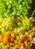 Το πιπέρι χωρίζει σε τετράγωνα στοκ εικόνα με δικαίωμα ελεύθερης χρήσης