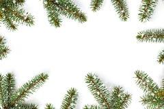 Το πλαίσιο του πράσινου έλατου διακλαδίζεται στο άσπρο υπόβαθρο - σύνθεση Χριστουγέννων, νέο χειμερινό υπόβαθρο έτους Επίπεδος βά στοκ φωτογραφίες με δικαίωμα ελεύθερης χρήσης