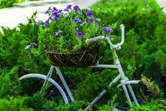 Το ποδήλατο στη χλόη Στοκ Εικόνα