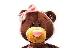 Το πορτρέτο ενός βελούδου teddy αντέχει το παιχνίδι Στοκ Εικόνες