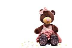 Το πορτρέτο ενός βελούδου teddy αντέχει το παιχνίδι Στοκ Φωτογραφία