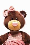 Το πορτρέτο ενός βελούδου teddy αντέχει το παιχνίδι Στοκ εικόνα με δικαίωμα ελεύθερης χρήσης