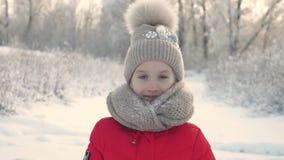 Το πορτρέτο ενός μικρού κοριτσιού πλέκει μέσα το μαντίλι και το καπέλο σε ένα υπόβαθρο ενός πάρκου χιονιού Όμορφο κορίτσι παιδιών απόθεμα βίντεο