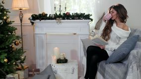 Το πορτρέτο μιας γυναίκας που διαβάζει ένα βιβλίο, πίνοντας το κορίτσι τσαγιού χαμογελώντας, νέα γυναίκα έντυσε σε ένα πλεκτό άνε απόθεμα βίντεο