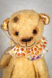 Το πορτρέτο ντεμοντέ teddy αντέχει Στοκ Φωτογραφία