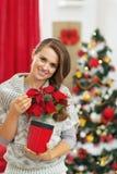 Το πορτρέτο της ευτυχούς νέας γυναίκας με τα Χριστούγεννα αυξήθηκε Στοκ Εικόνες