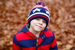 Το πορτρέτο του ευτυχούς χαριτωμένου αγοριού παιδάκι με το φθινόπωρο αφήνει το υπόβαθρο στο ζωηρόχρωμο ιματισμό Αστείο παιδί που  Στοκ φωτογραφία με δικαίωμα ελεύθερης χρήσης