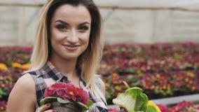 Το πορτρέτο του ευτυχούς όμορφου κοριτσιού παρουσιάζει flowerpot στη κάμερα με το χαμόγελο φιλμ μικρού μήκους