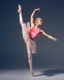 Το πορτρέτο του ballerina στο μπαλέτο θέτει Στοκ φωτογραφίες με δικαίωμα ελεύθερης χρήσης