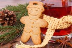 Το ποτήρι του θερμαμένου κρασιού τύλιξε το μαντίλι, το μελόψωμο, τα καρυκεύματα και τους κομψούς κλάδους Στοκ Εικόνες